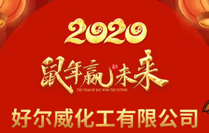 好威2019总结表彰大会暨2020迎新春晚会